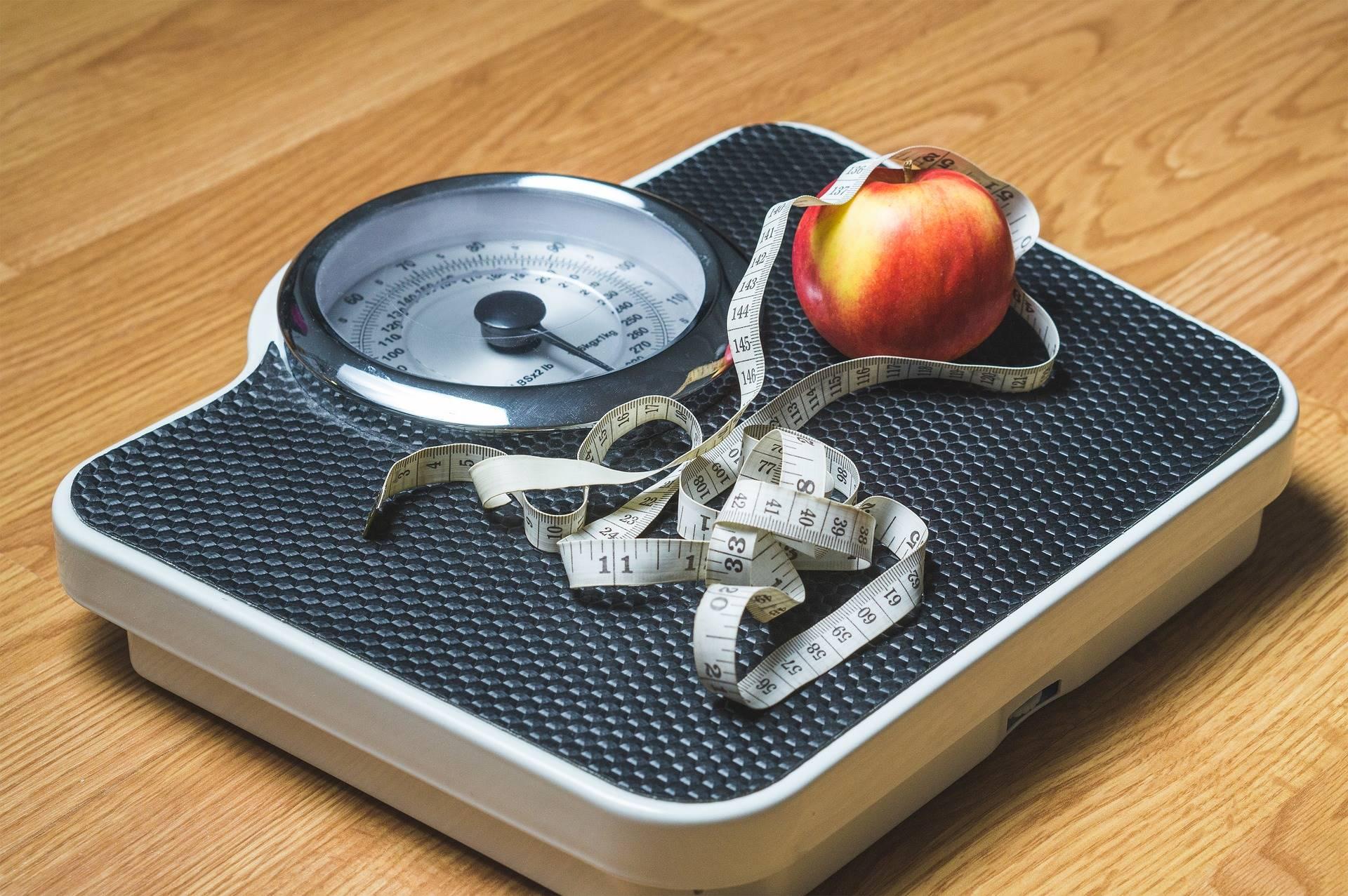 'Obese' terug met tien nieuwe deelnemers