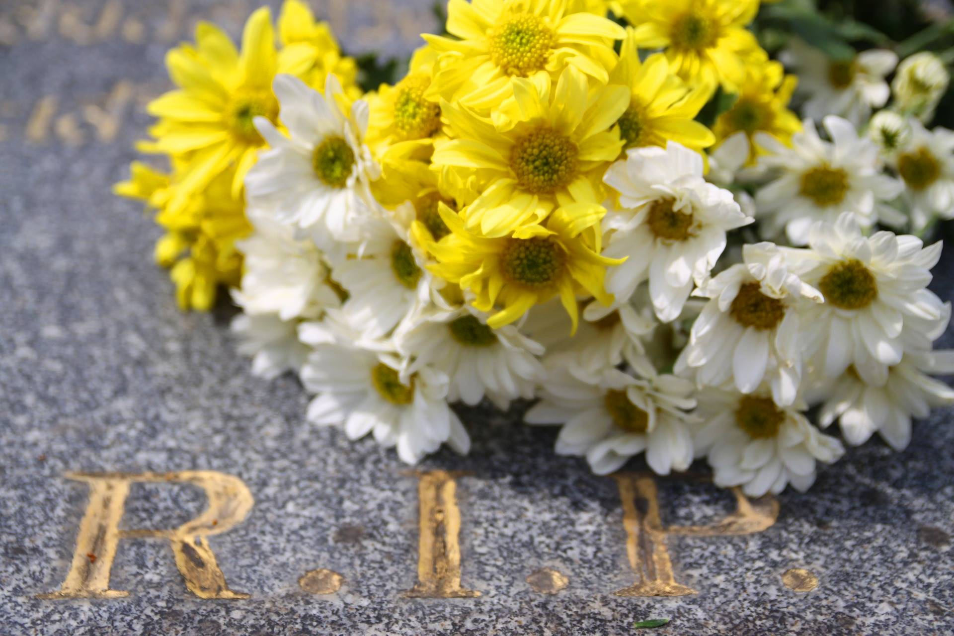 Hoe dichters eenzame doden eren die verder niemand hebben